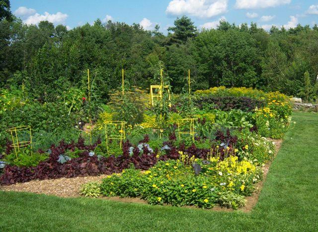 beautiful vegetable gardens left side vegetable garden