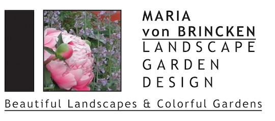 Creating a Paradise Right in Your Backyard: An Interview with Maria Von Brincken Landscape Garden Design