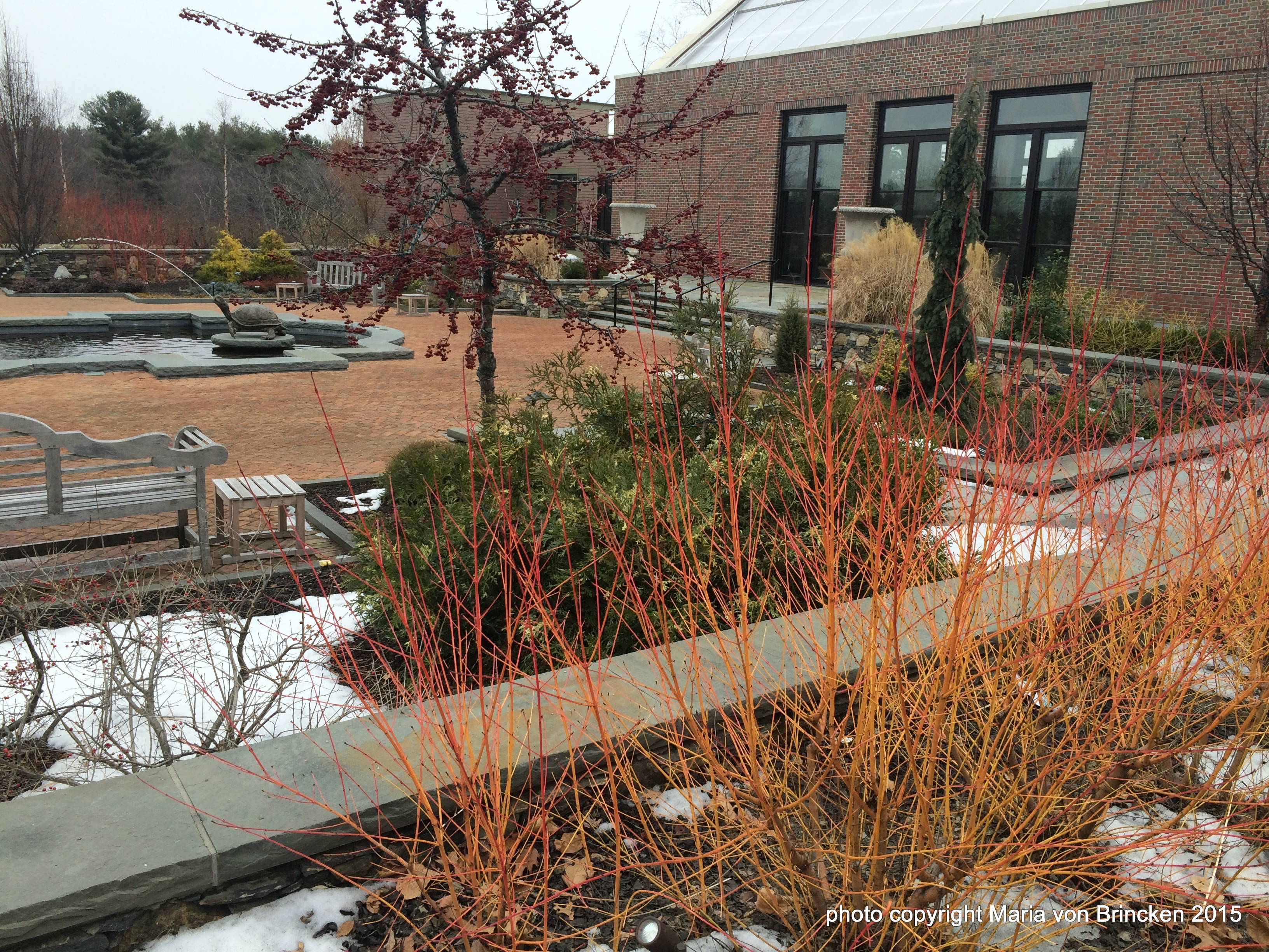 how to make a winter garden to delight invite and inspire