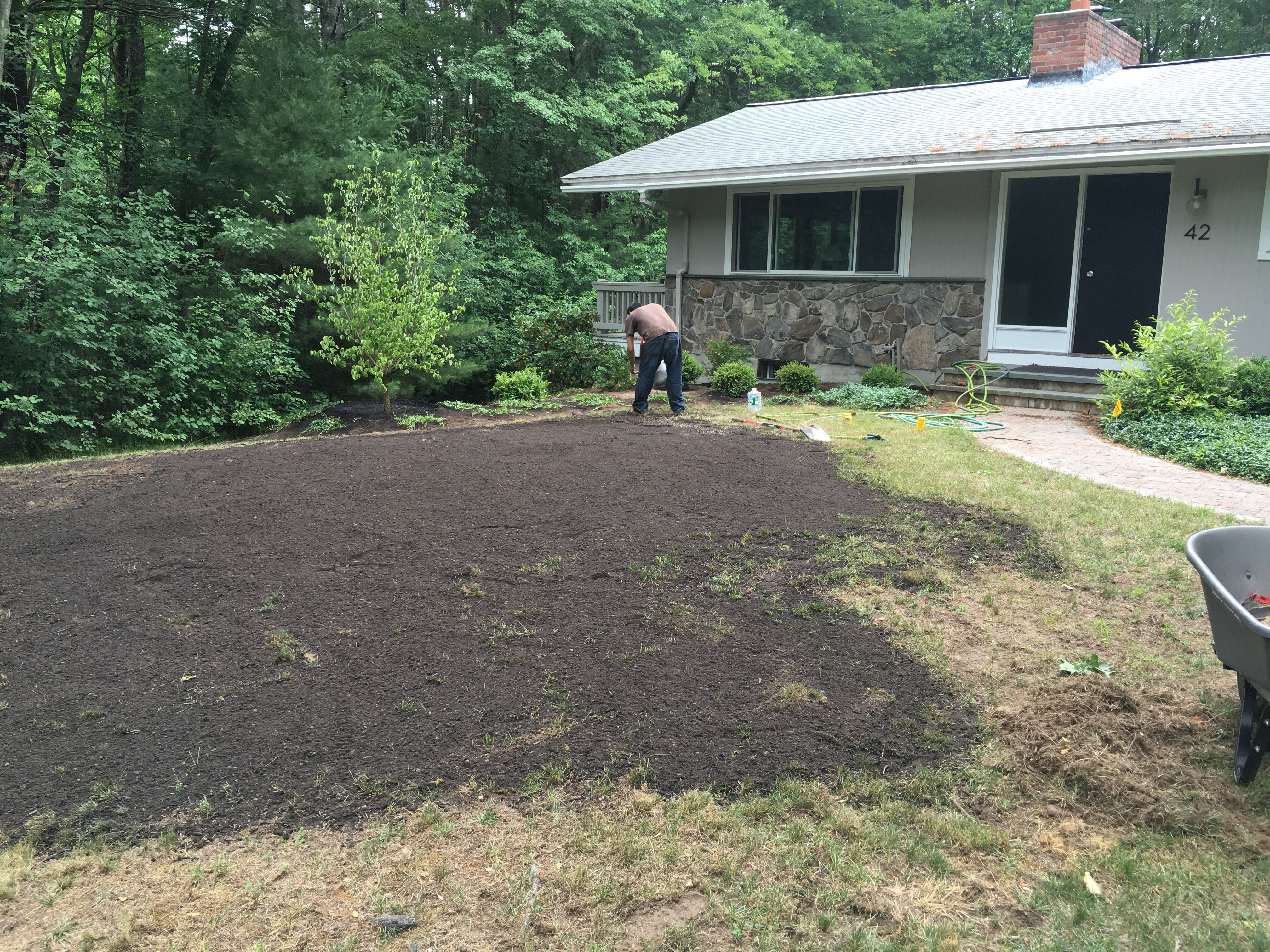 During installation seeding the lawn