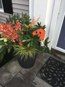 Quick Fall Harvest/Halloween Containers
