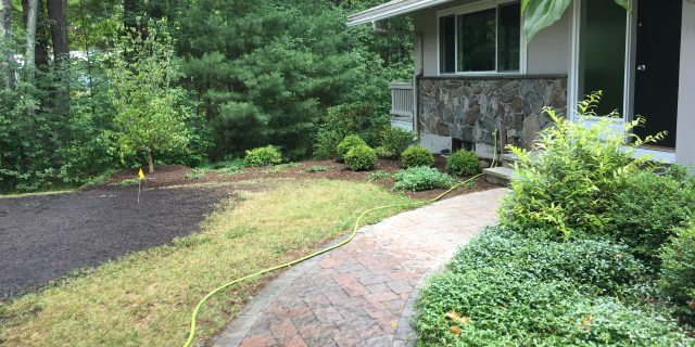 Front Foundation Planting Gets A Facelift