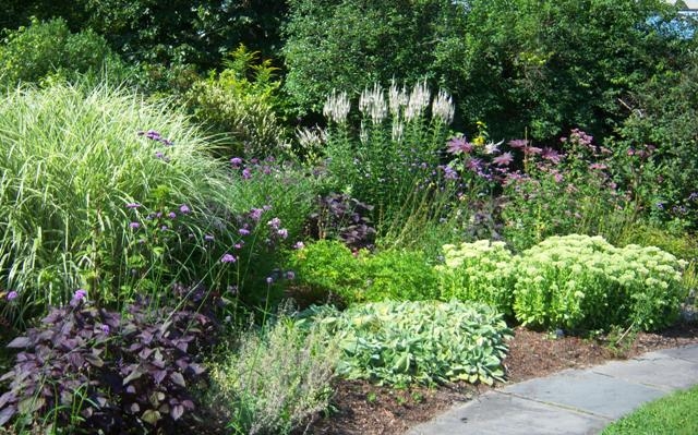 Inspiring Late Summer Images From Tower Hill Botanical