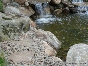 Detail: Sitting Rocks