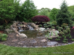 It took 10 days to build this garden and tons of rocks of all sizes!