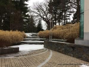1-007 Decordova winter grasses