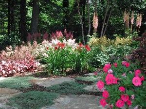 Decluttering Your Garden