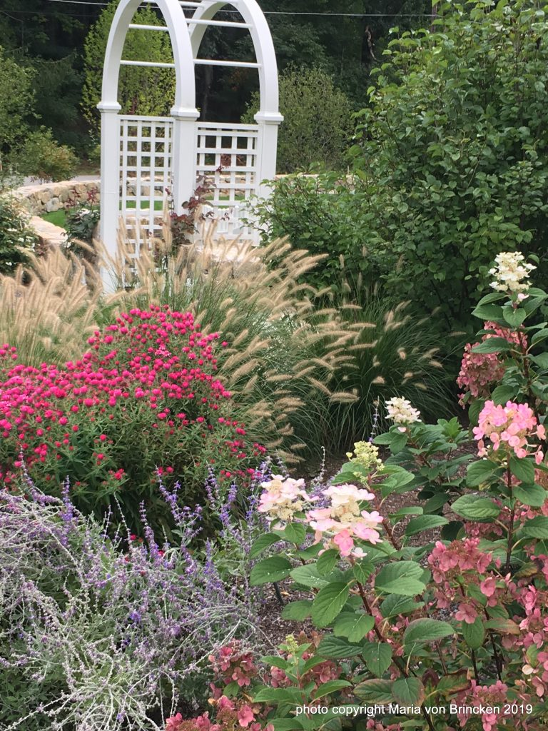 Late Summer Flower Garden